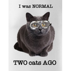 Normal 2 cats AGO - pánské/dámské/dětské