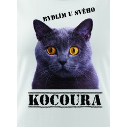 Bydlím u svého kocoura- dámské tričko